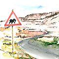 traversée d 'éléphants 1