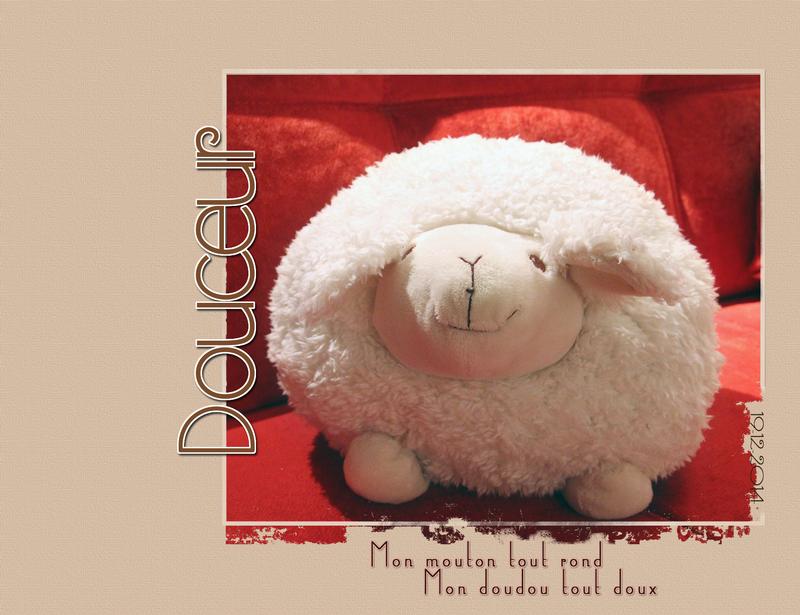 douceur mouton_