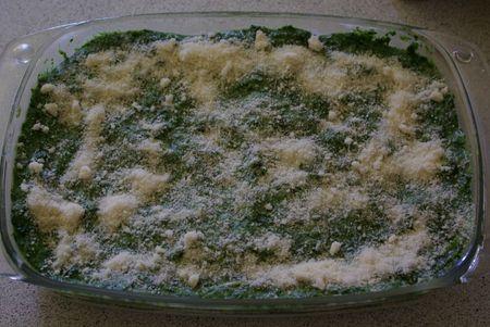 Lasagne Epinard-Saumon 007
