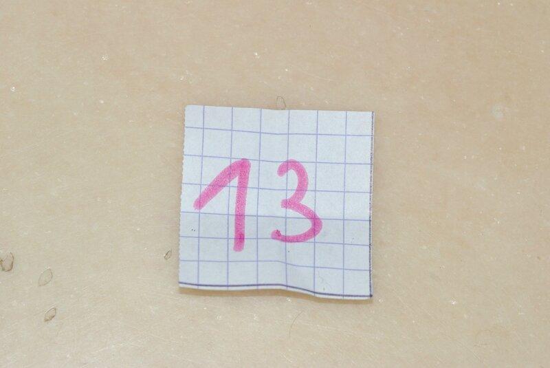 IMGP2655