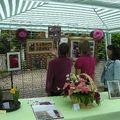 festival roses 2008 165