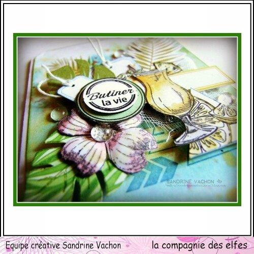 Sandrine VACHON DT LA COMPAGNIE DES ELFES (3)