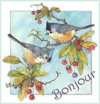 bonjour 2 oiseaux