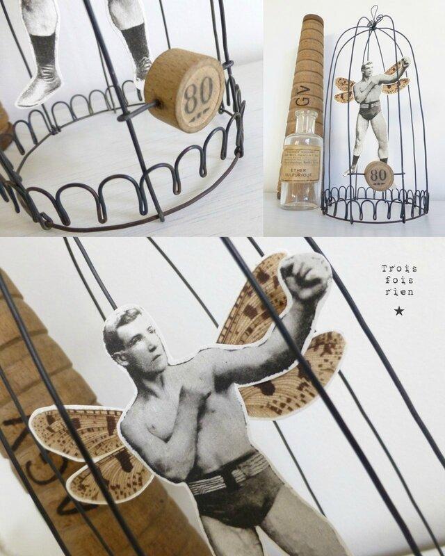 Drôle d'oiseaux N° 30, cage fil de fer, wire, fil de fer, papillon, boxeur, strongman, trois fois rien (4)