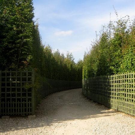 27_Versailles