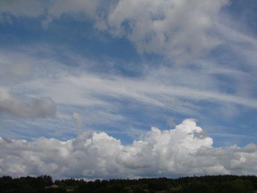 2008 06 03 Bourgonnement