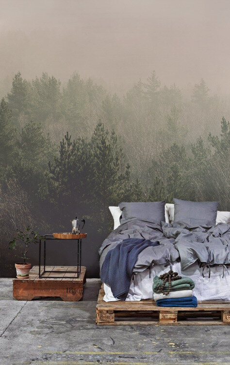 wall_paper_forest