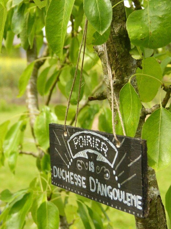 etiquettes plantes jardin chalk board rock'n roll1