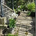Windows-Live-Writer/Joli-printemps-au-jardin-_601C/20170402_133849_thumb