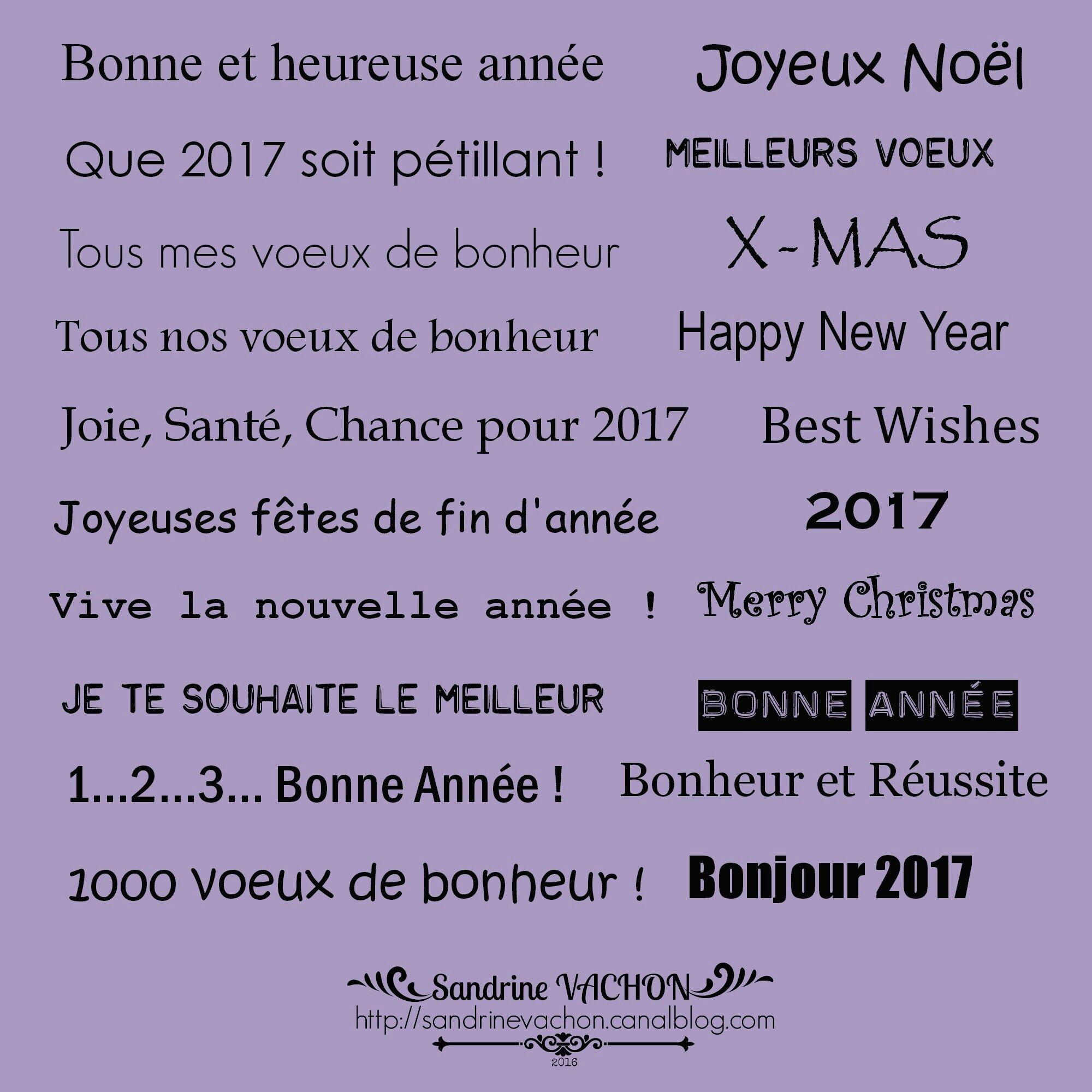 Sandrine VACHON planche 60