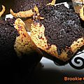 0623 Brookie Cups Couv