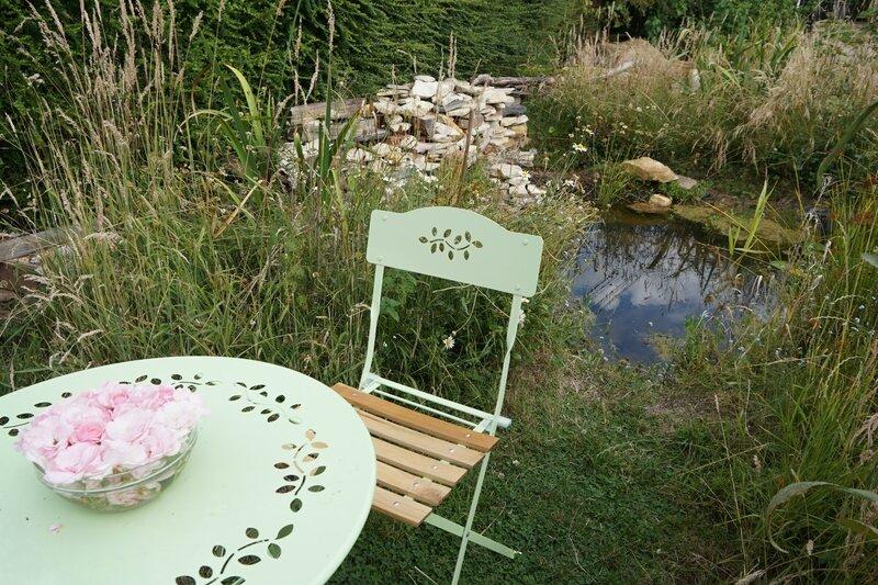 Le lieu de tant d 39 motions la picane petit jardin for Alexandre jardin le petit sauvage