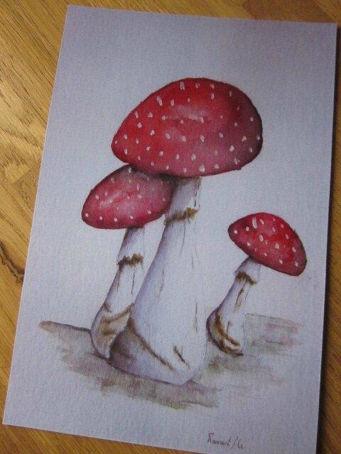 Carte postale 15X10 cm - Les champignons VI (2)