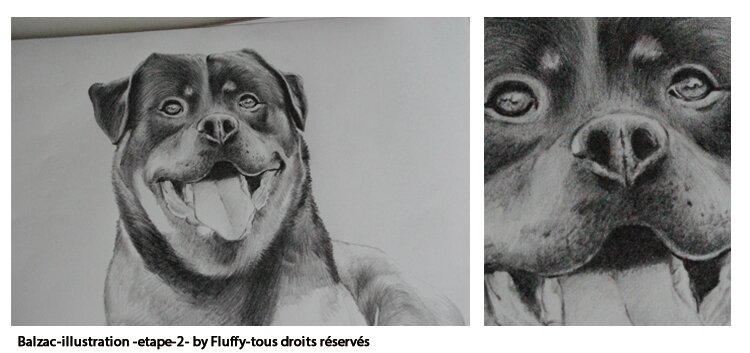 illustration_balzac_aperçu_02-fluffy_tous_droits_reserves