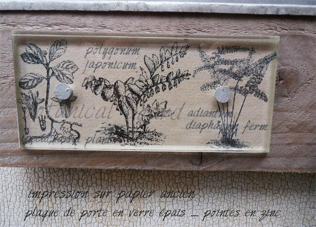 botanica_texte