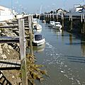 Port du collet - vendée