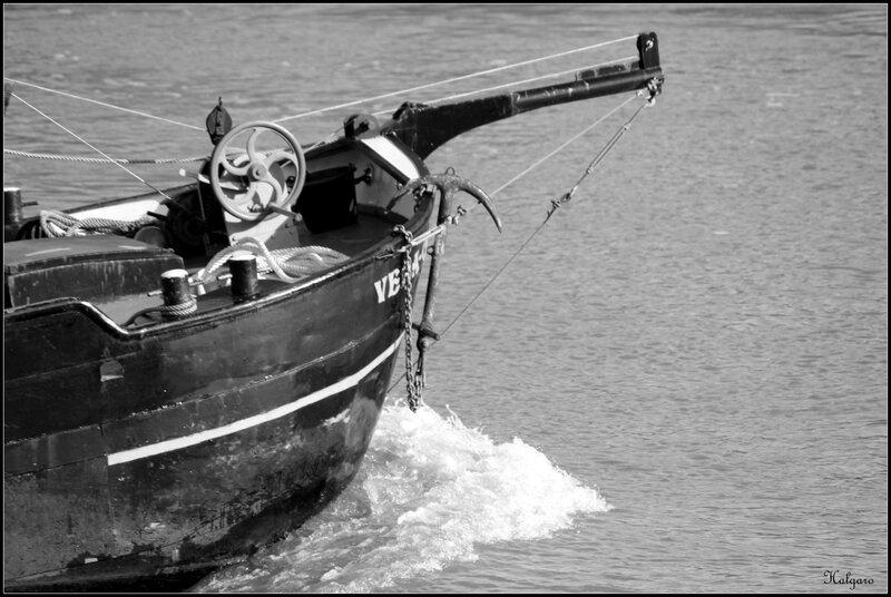 divers 141