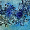 carnet lichen4
