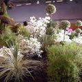 Floralies 075