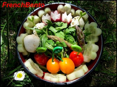 salad__t_
