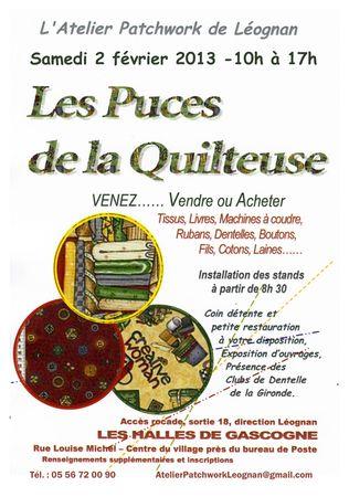 Puces-2013-Affiche-mail (2)
