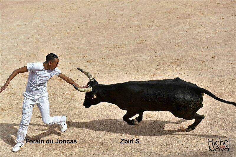 ISTRES 17