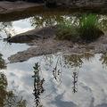 Supplique pour devenir un petit fleuve méridional et méconnu