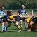 73IMG_0966T