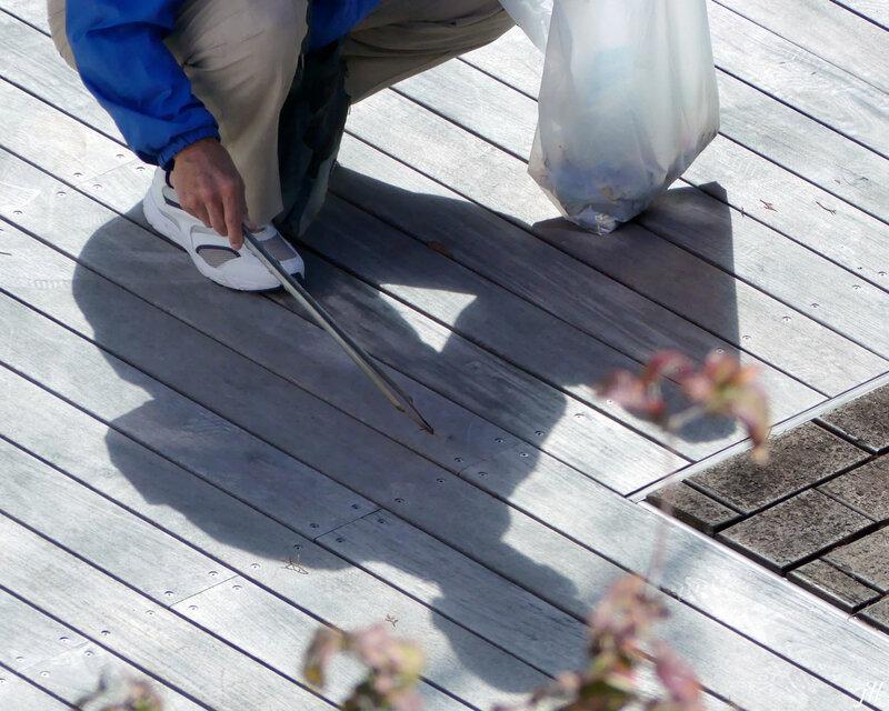 P1060502 feuilles ramassent pince