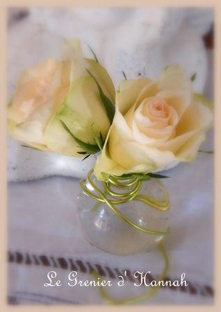 roses_janier_2012_2