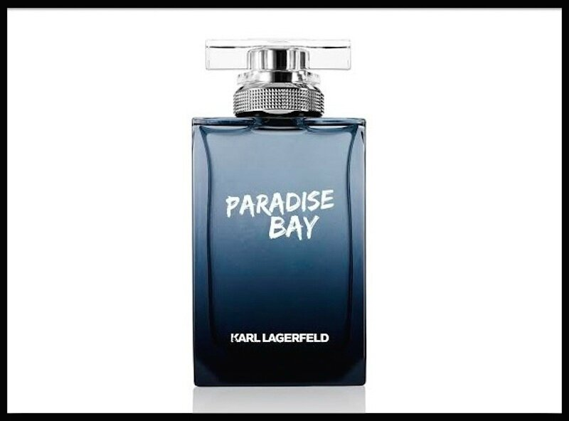 karl lagerfeld paradise bay men