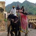jaipur fort damber573