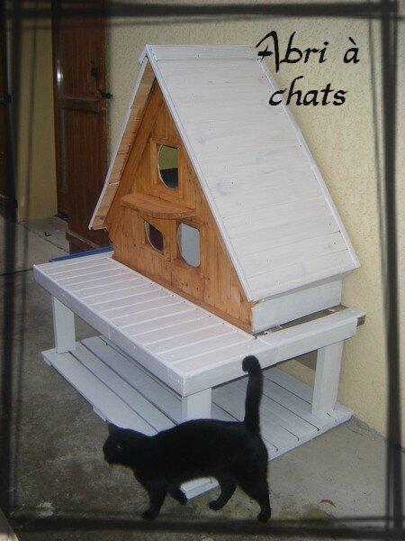 abri chats