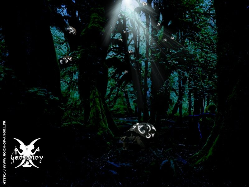 turtle_forest_at_night_by_fallenrazziel-d47nrdk
