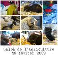 Salon de l'agriculture