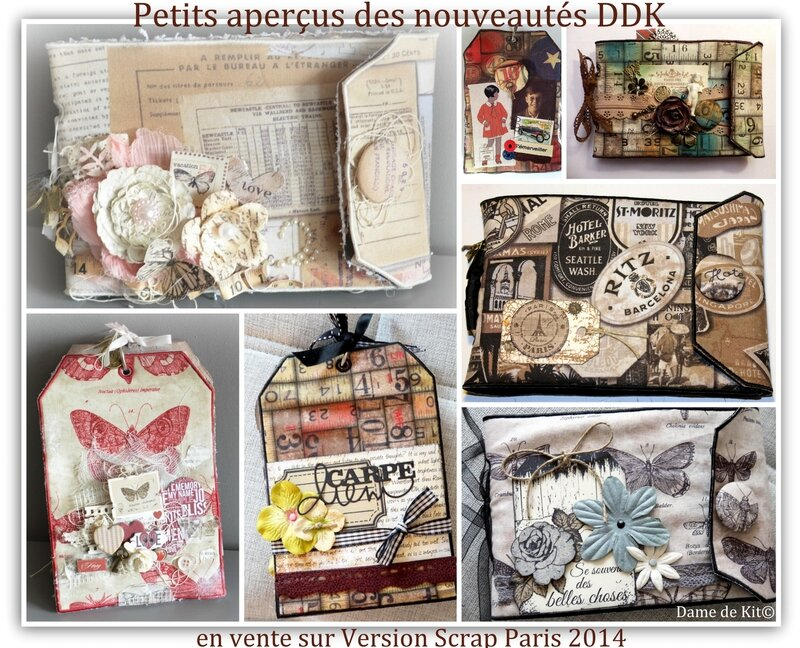 Visuel Albums TIM HOLTZ VS 2014 sans album cathy