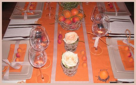 2009_07_07_table_abricots19