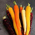 Navarin d'agneau aux carottes confites au miel et écrasé de pommes de terre