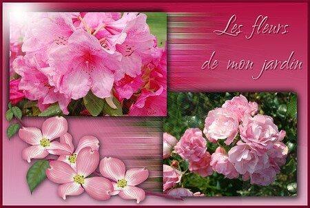 LES_FLEURS_DE_MON_JARDIN