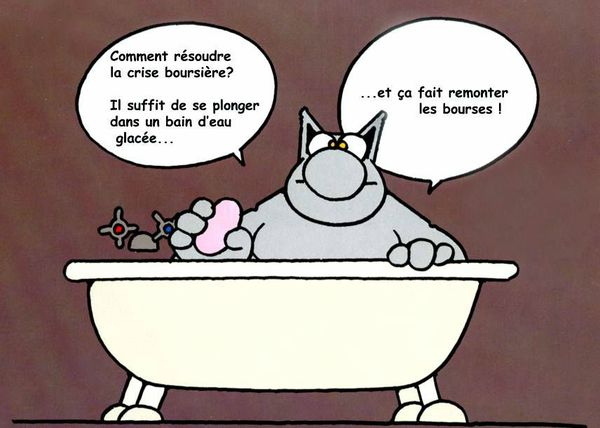 le_chat_crise_boursiere