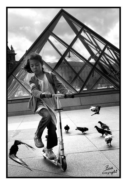 Foncer sur les pigeons