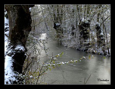 marais_sous_la_neige