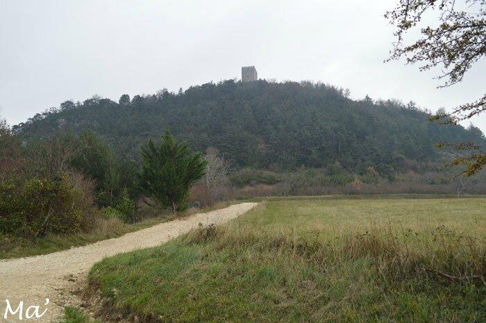 141129_Barcelonne6