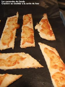 Crackers_sal_s____la_sortie_du_four_