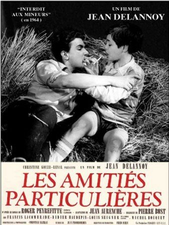 LES_AMITIES_PARTICULIERE