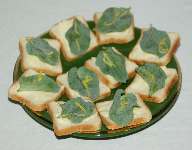 Toasts la feuille d 39 hu tre le palais des saveurs for Plante huitre