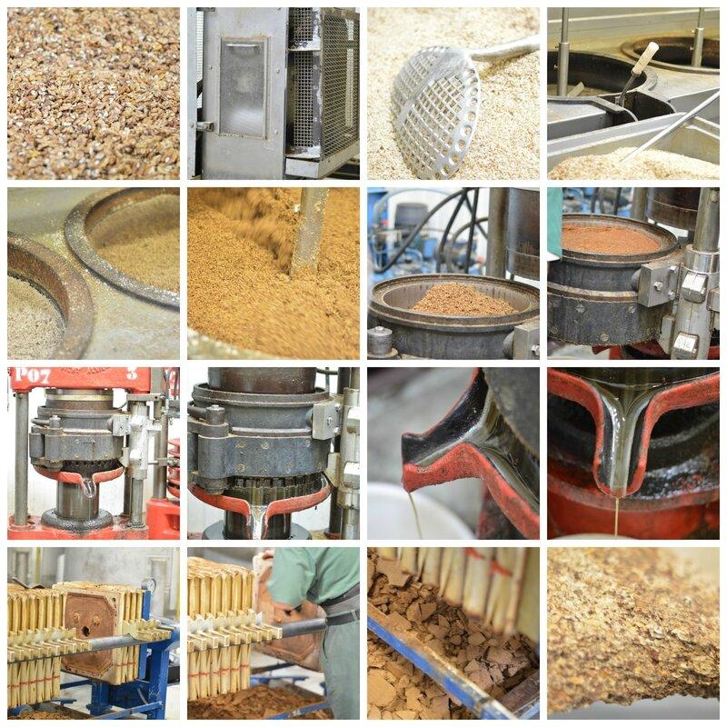 fabrication huile noix la quotidienne