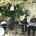 festival roses 2008 119