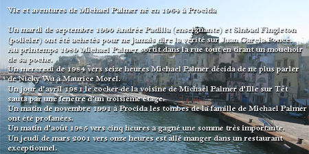 Michael_Palmer_3