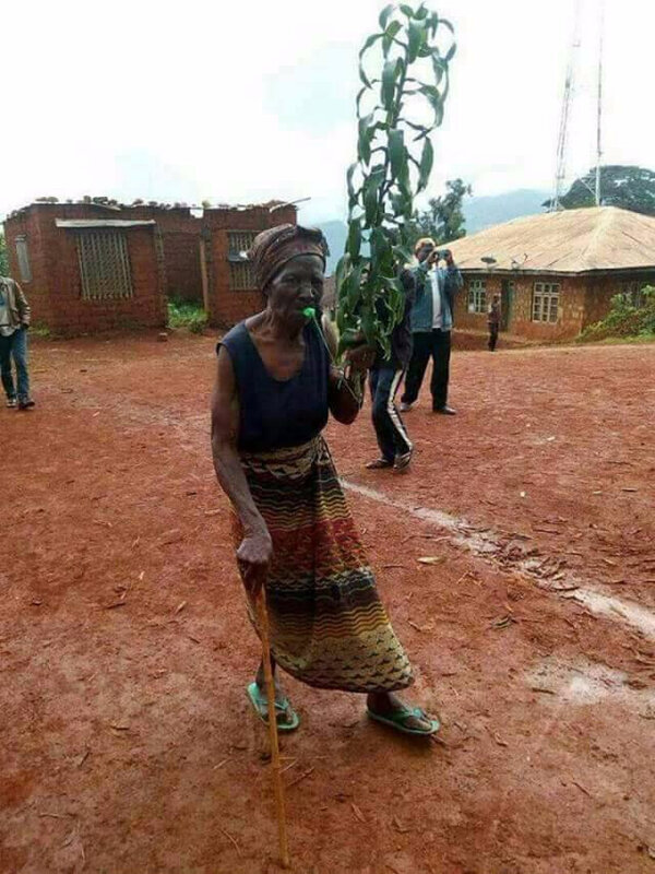 Une femme âgée brandit l'arbre de la paix